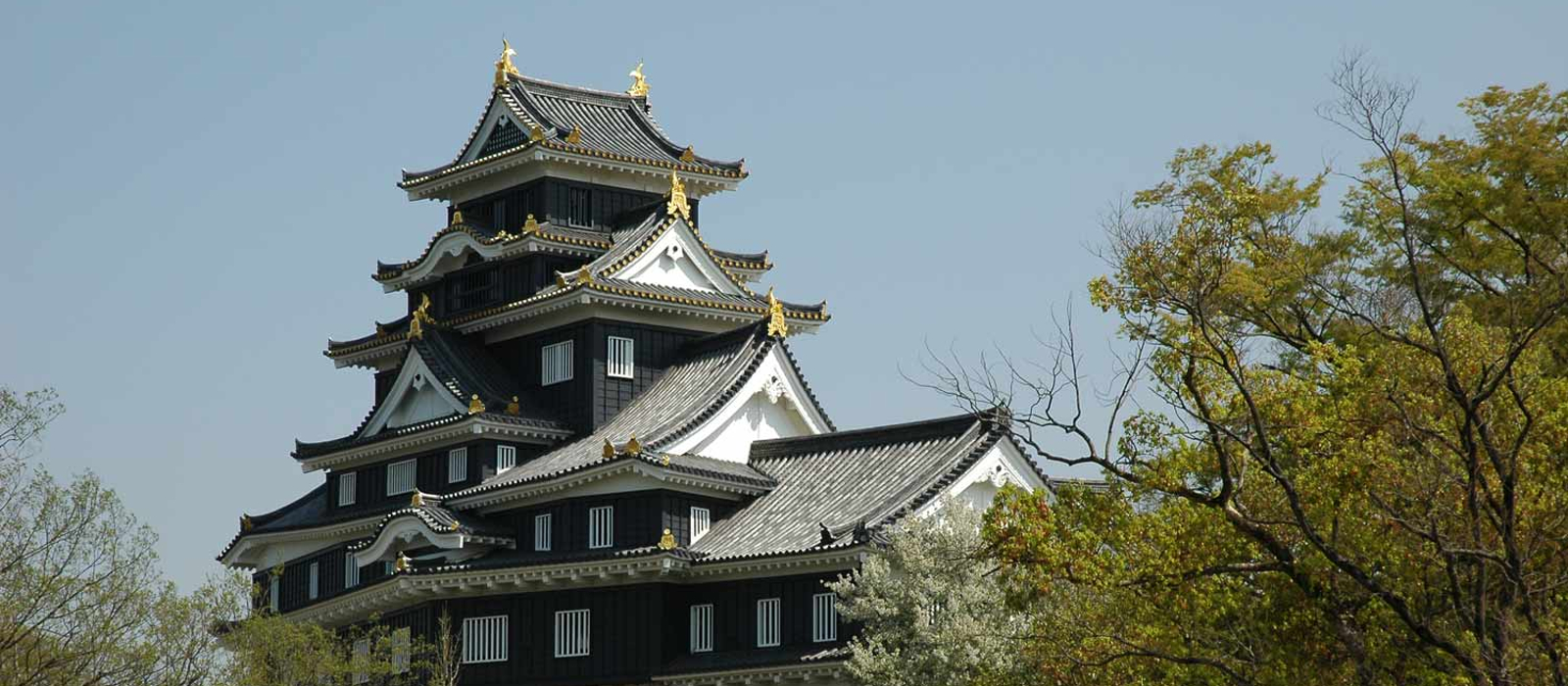 Culture and Heritage in Japan with Enchanting Travels