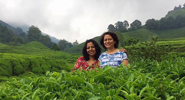 Cameron Highland - Tea Plantation