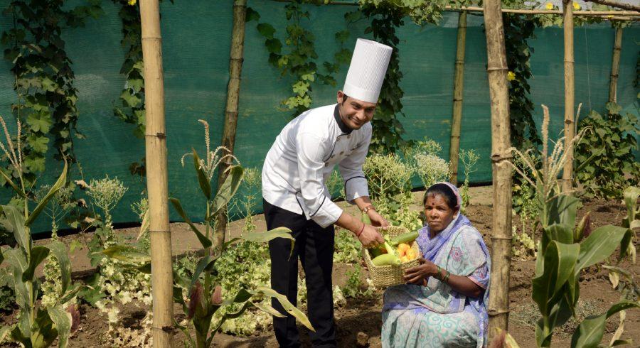 Farm to table - Organic garden