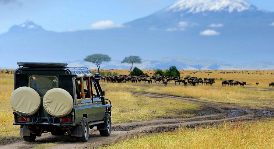 Enchanting Travels Kenya Tours Masai Mara (2)