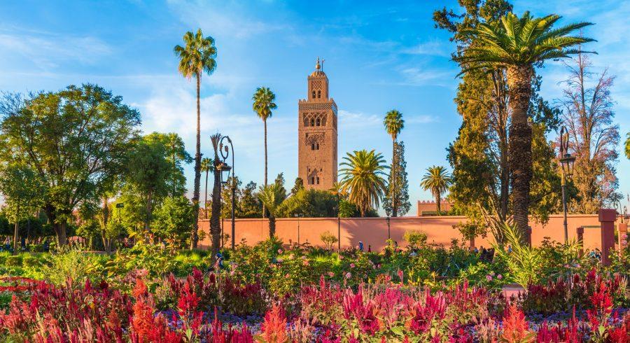 Koutoubia Mosque and garden in Marrakech