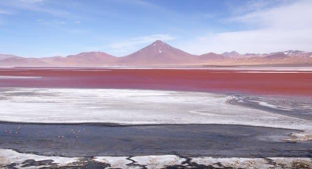 Laguna Colorada bei Ojo de Perdiz in der Uyuniwüste