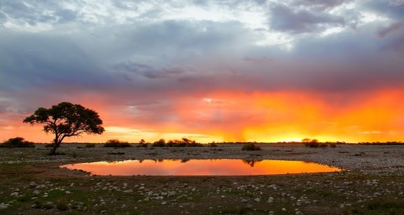 10 Exciting Reasons Why You Should Visit Namibia Now