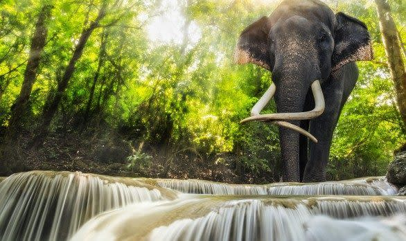 Erawanfälle, Kanchanaburi in Thailand