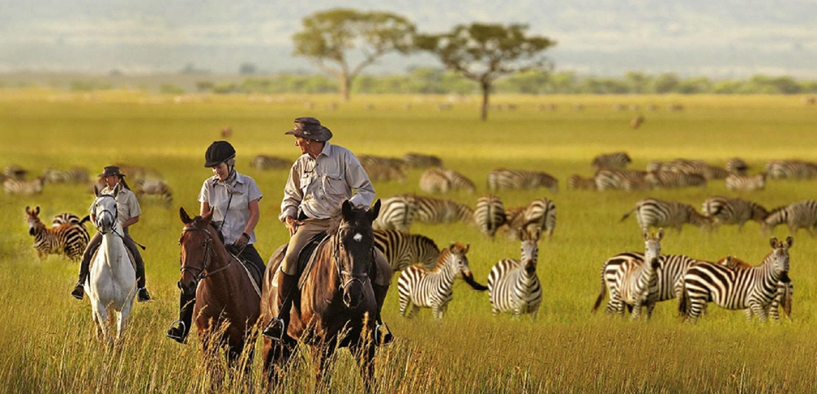 Tanzania Tours - horse riding
