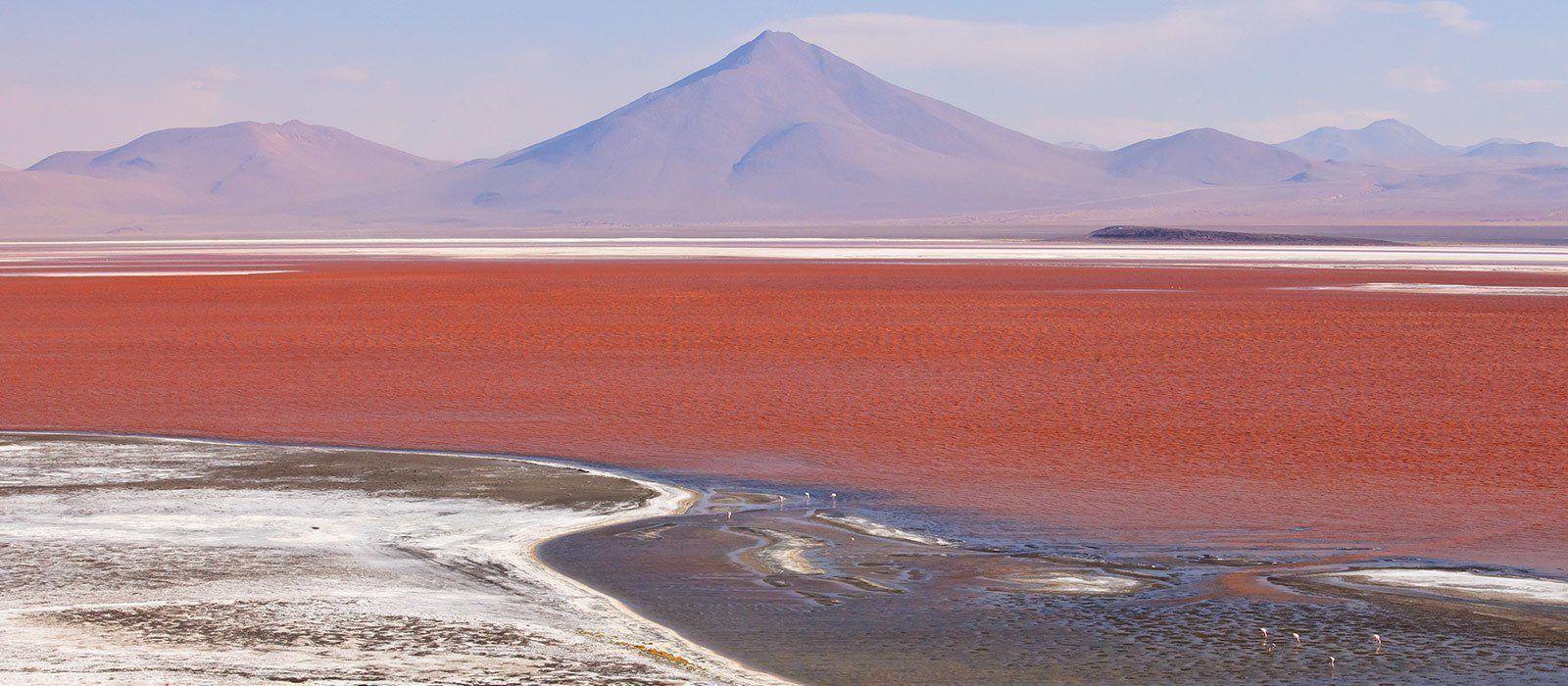 Bolivia Tours & Trips