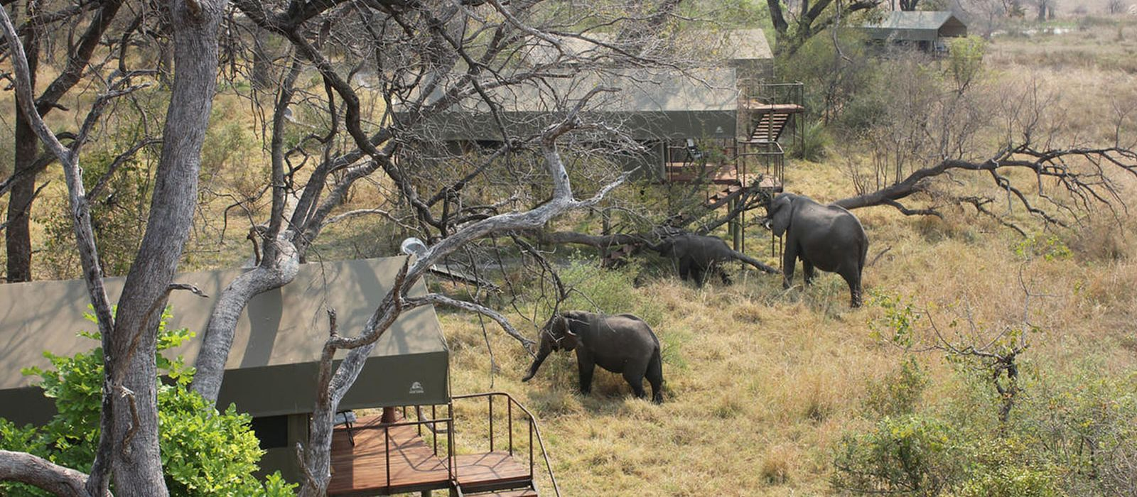 Hotel Nkasa Lupala Tented Lodge