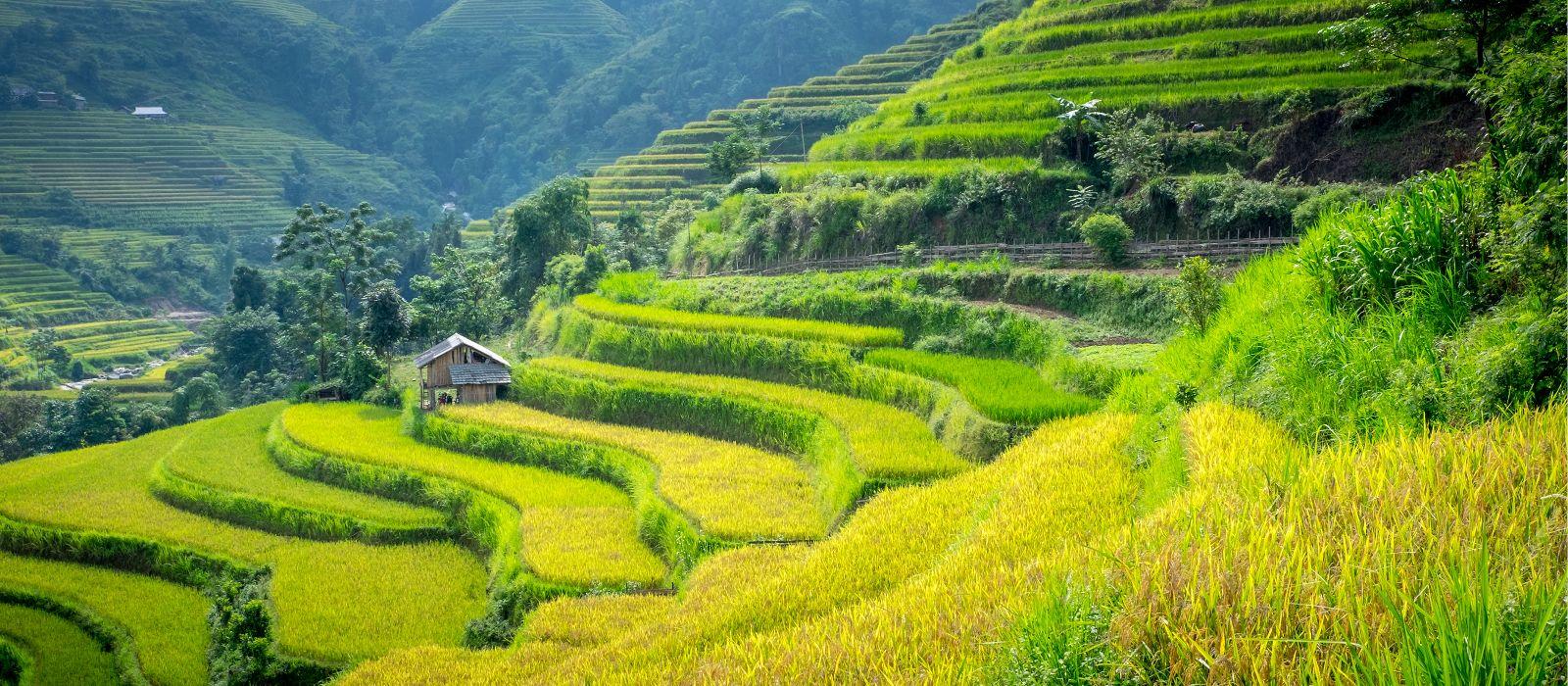 Reiseziel Laocai Vietnam