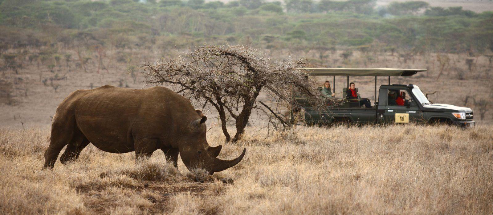 Kenia Hautnah: Safari Höhepunkte Urlaub 1