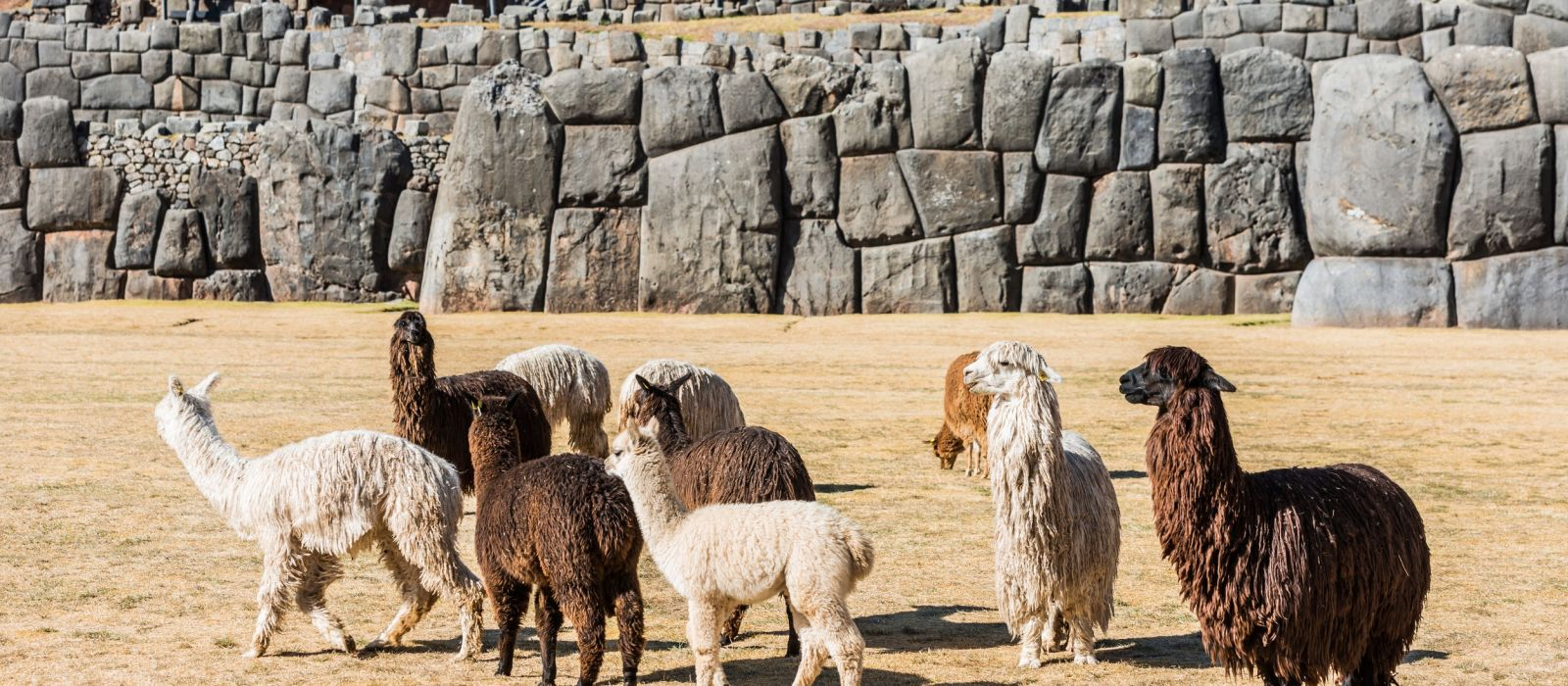 Peru: Classic Machu Picchu Tour Trip 2