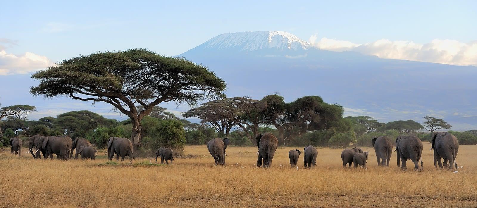 Nord-Tansania, ganz klassisch Urlaub 1
