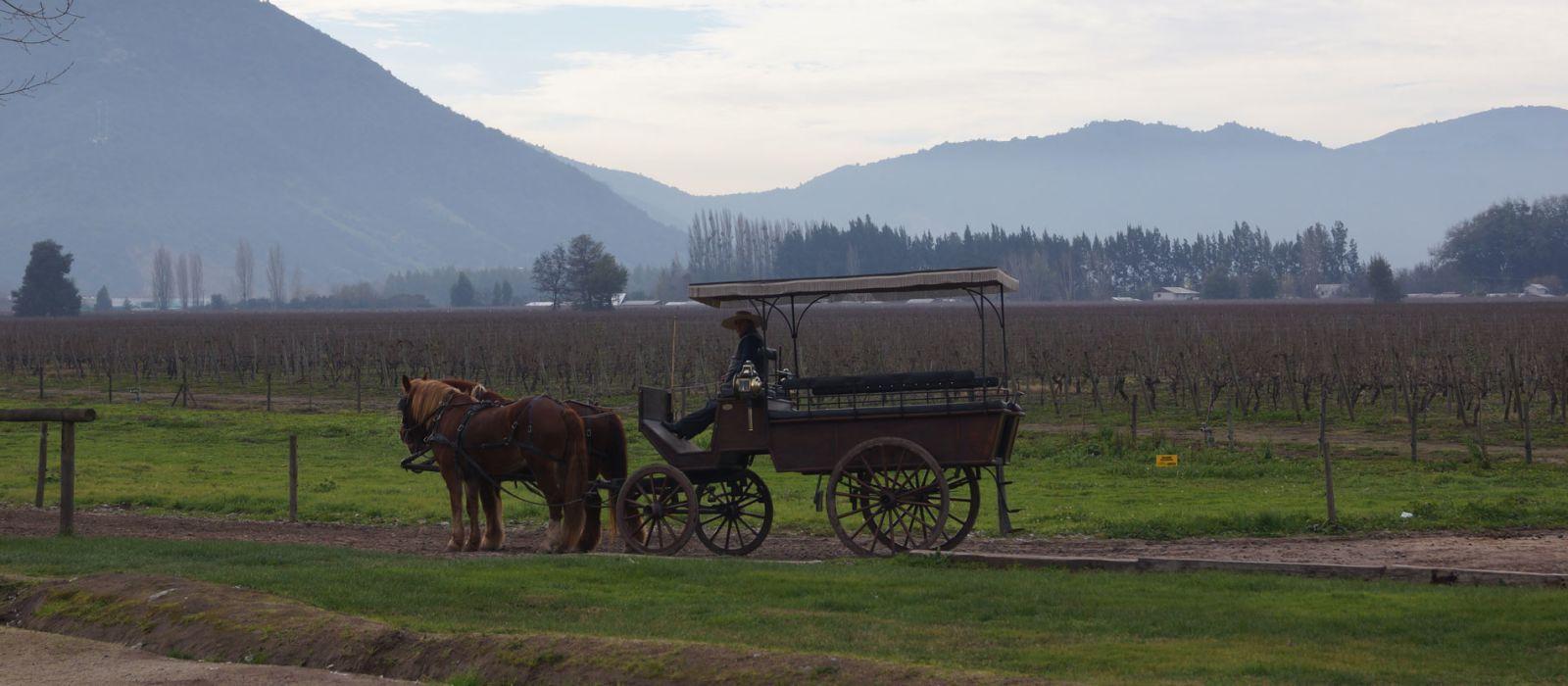 Destination Colchagua Chile