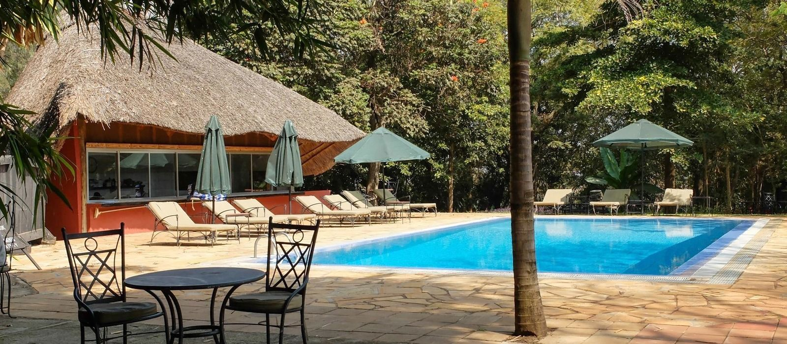 Hotel Ngorongoro Farm House