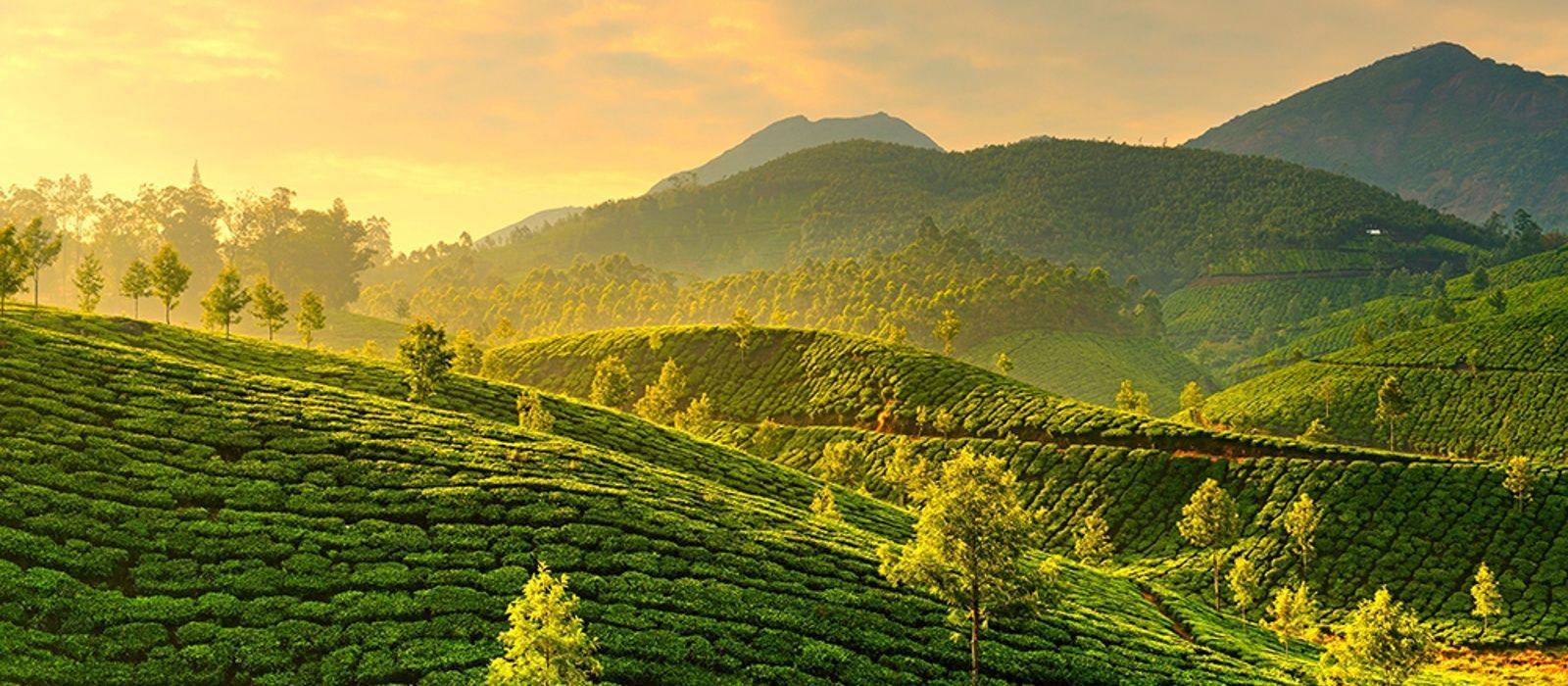 Los canales de Kerala Tour Trip 2