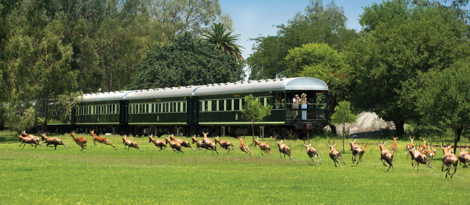 Kapstadt, Rovos Rails und Safari Urlaub 2