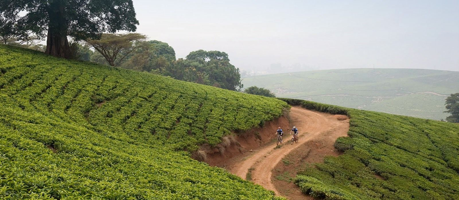 Malawi Rundreise: Natur, Safari und Lake Malawi Urlaub 5