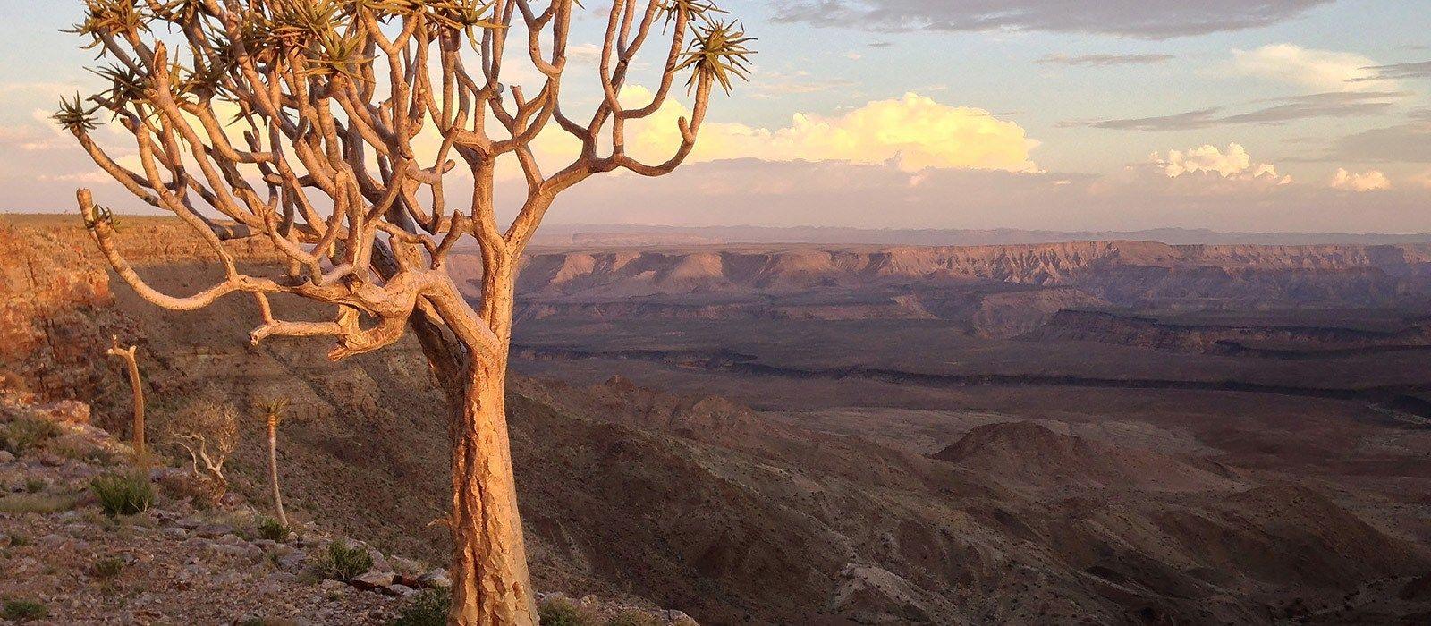 Classic Namibia Luxury Safari Tour Trip 3
