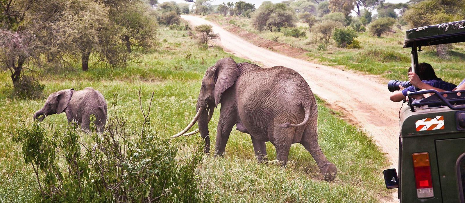 Destination Hluhluwe South Africa