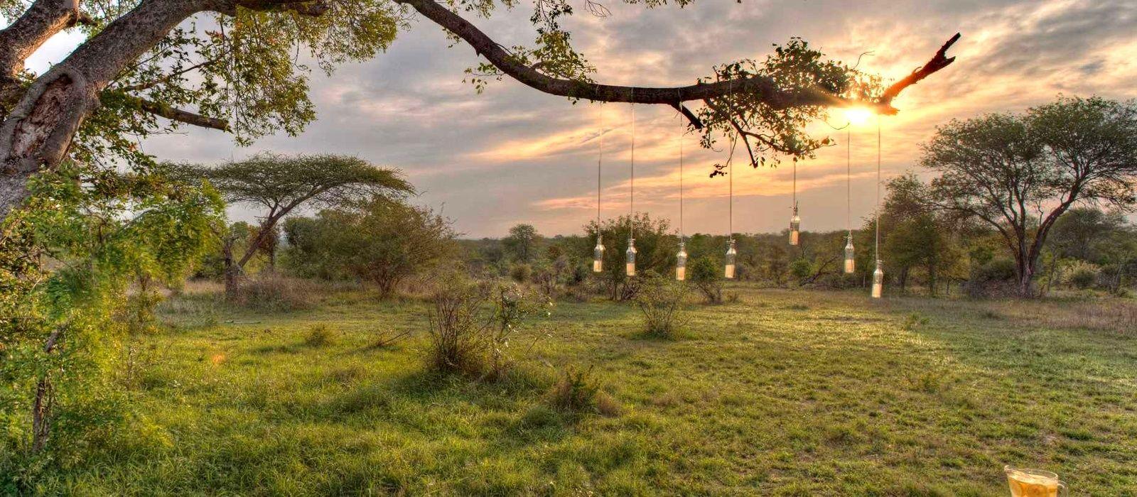 Südafrikas Wildnis entdecken – West Kap und Krüger Nationalpark Urlaub 4
