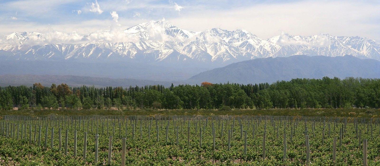Argentinien & Chile Gourmetreise Urlaub 2
