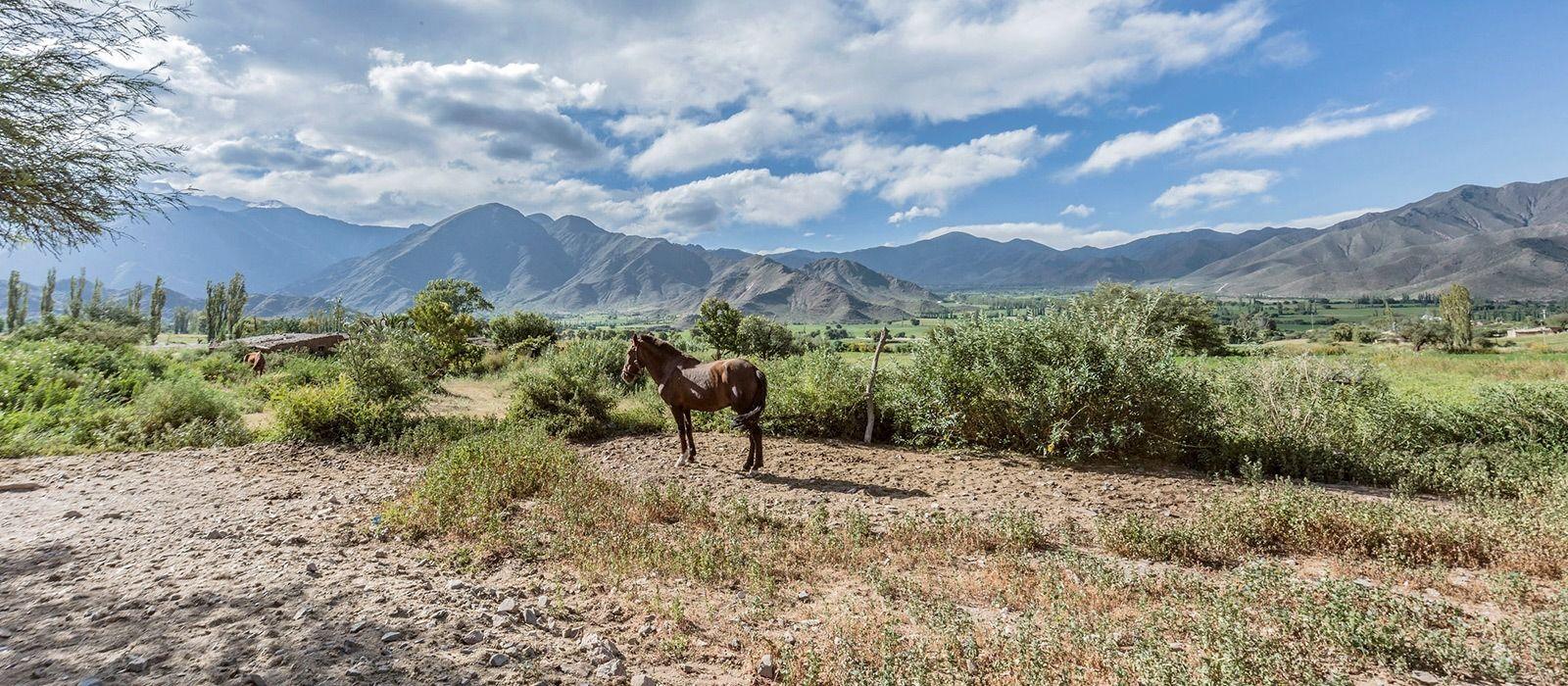 Argentinien: Die Schönheit des Nordens Urlaub 3