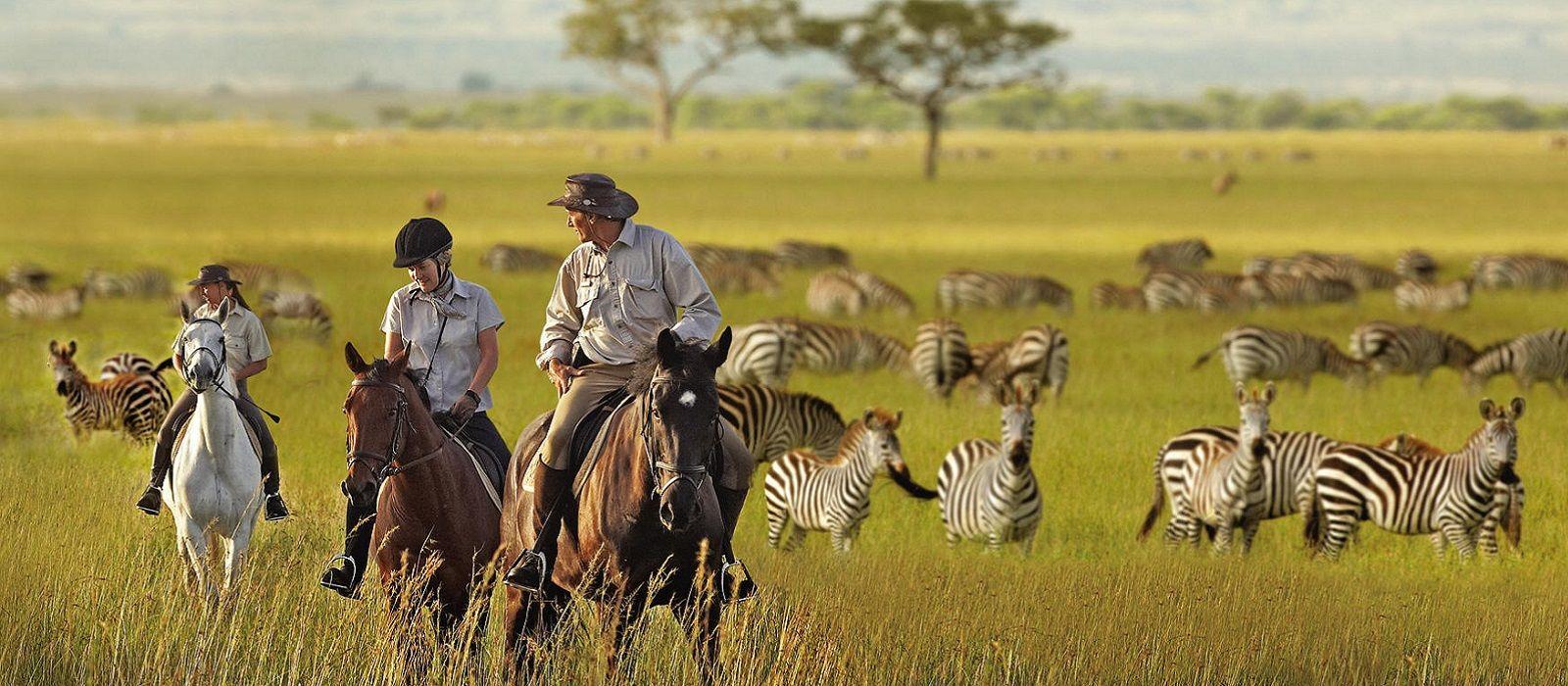 Classic Tanzania and Zanzibar Tour Trip 1