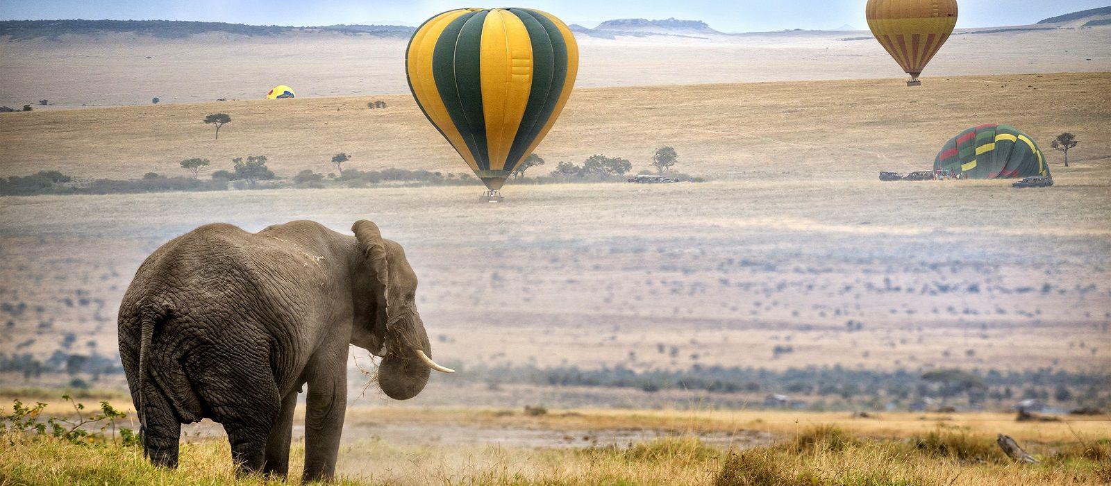 Classic Kenya: Samburu, Masai Mara and Beach Break Tour Trip 1