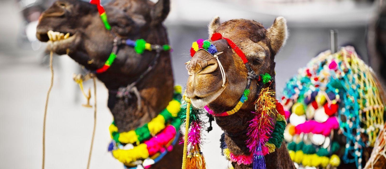 Offre exclusive Trident : Délices culturels du Rajasthan Tour Trip 4