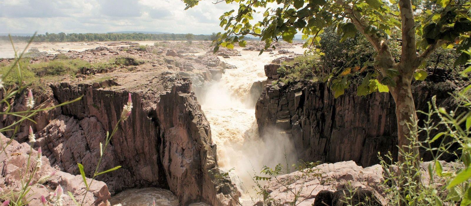 Nordindien Rundreise: Städte, Tempel & Safaris Urlaub 5