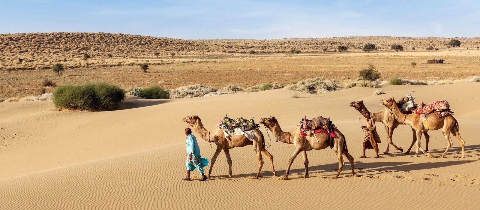 Rajasthan's Jewels and Secrets Tour Trip 5