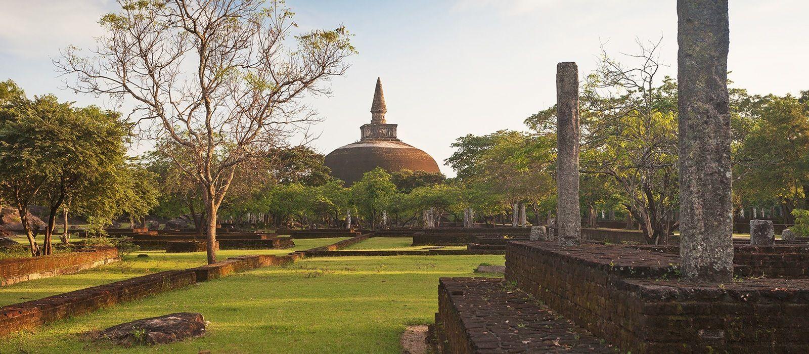 Simply Sri Lanka: Temples and Tea Tour Trip 4