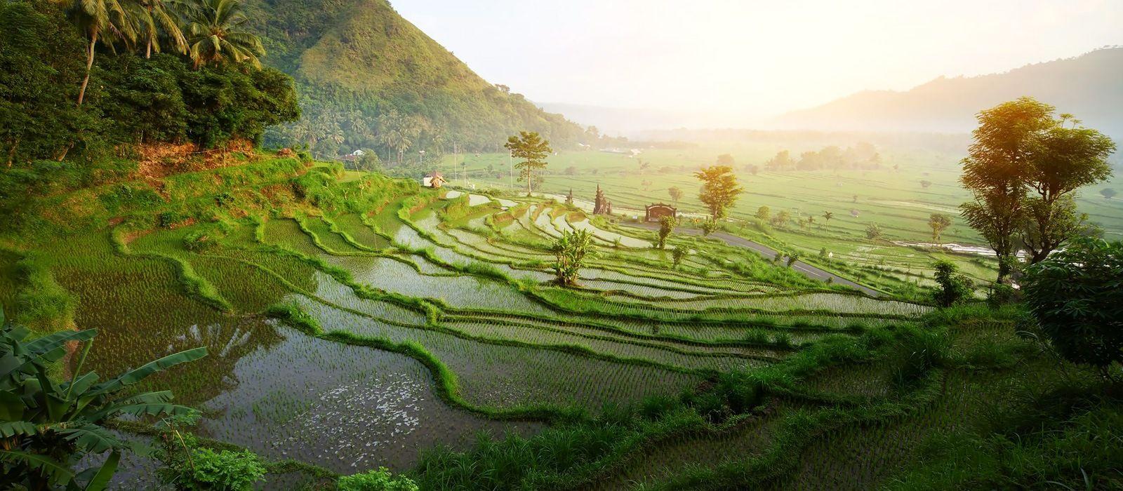 Abenteuer und Natur: Java und Bali Urlaub 1