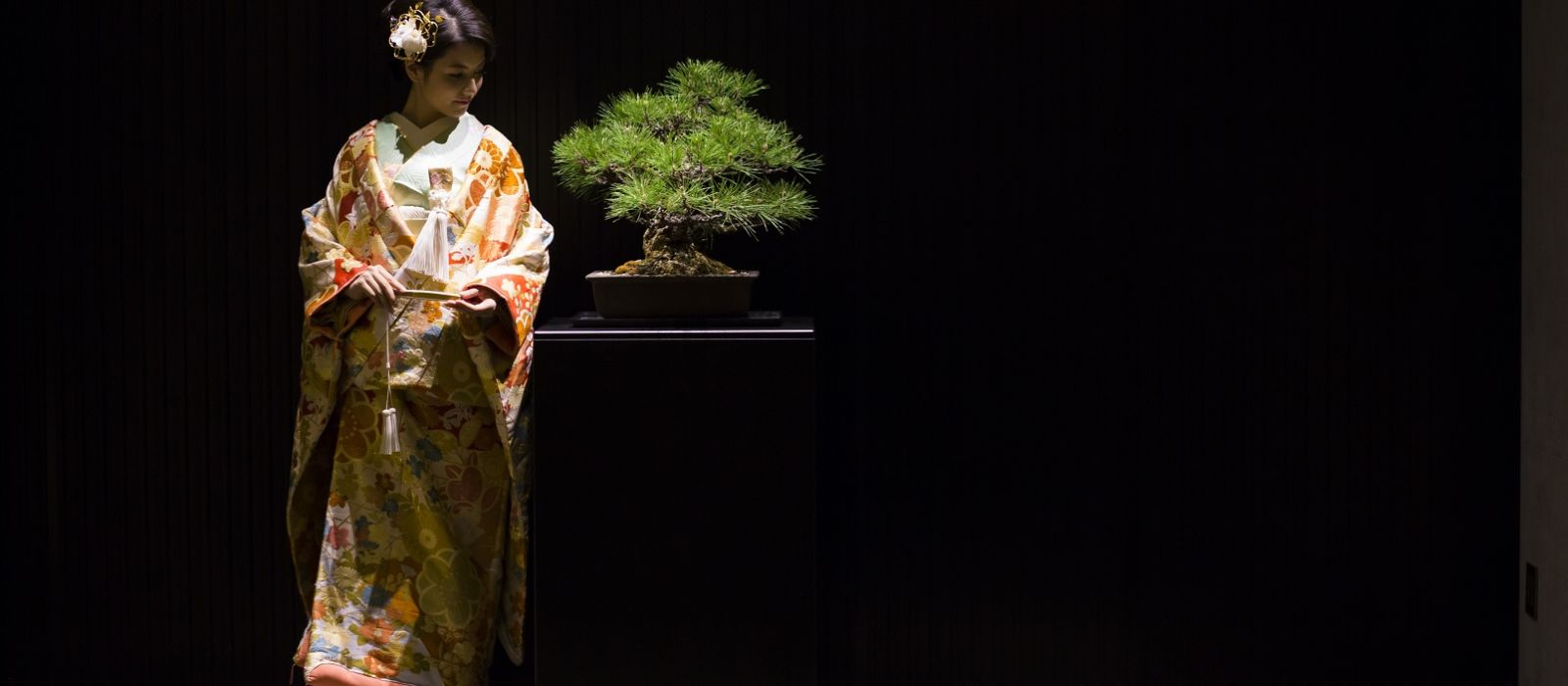 Culture and Heritage in Japan Tour Trip 2