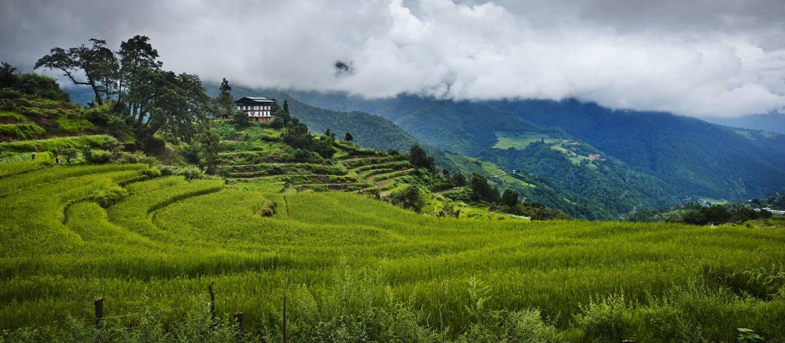 Luxury Bhutan and Thailand Paradise Islands Tour Trip 2