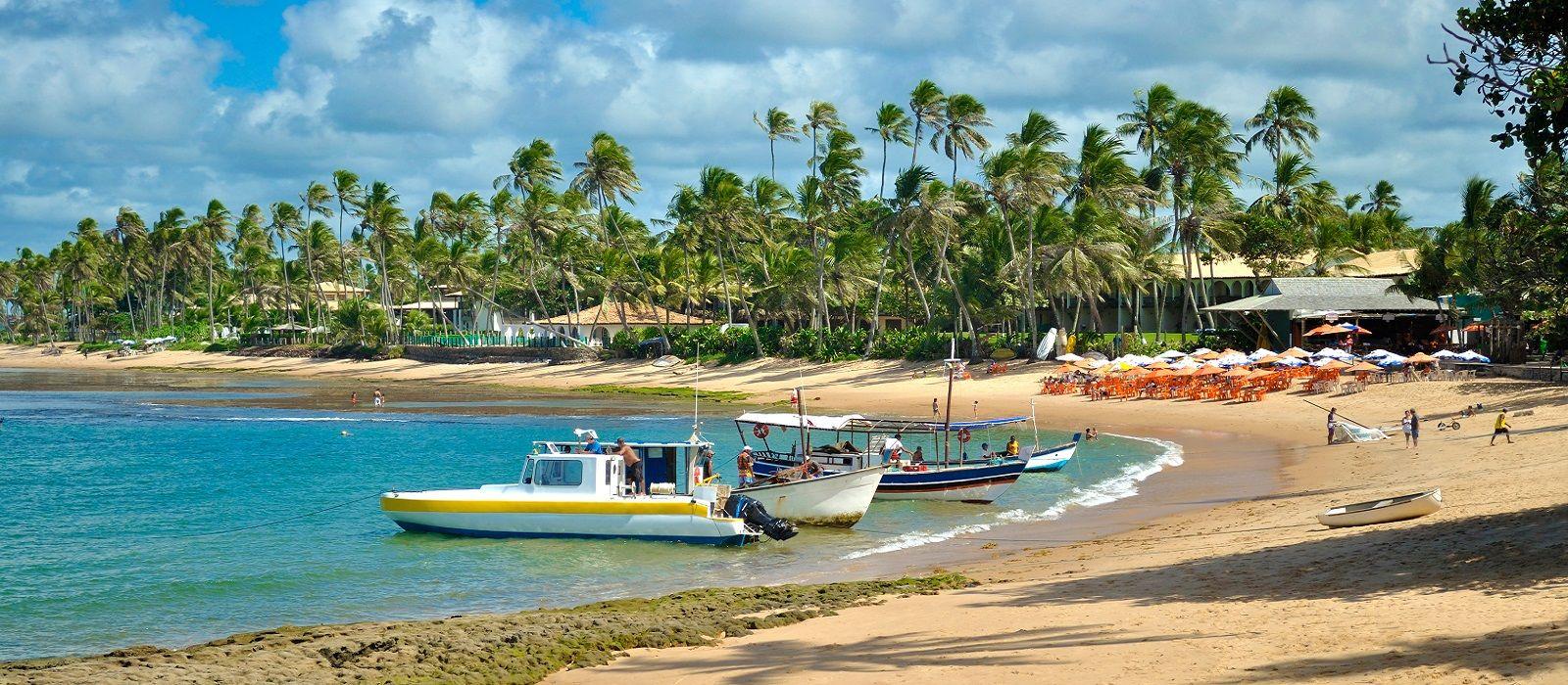 Amazon Rainforest and Beaches of Brazil Tour Trip 3