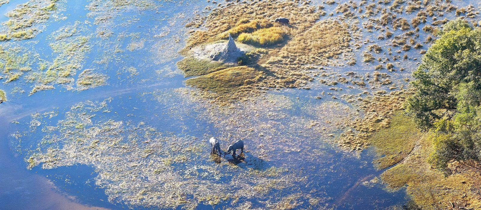 Krüger, Viktoriafälle & Okavango Delta – die Höhepunkte des südlichen Afrika Urlaub 1