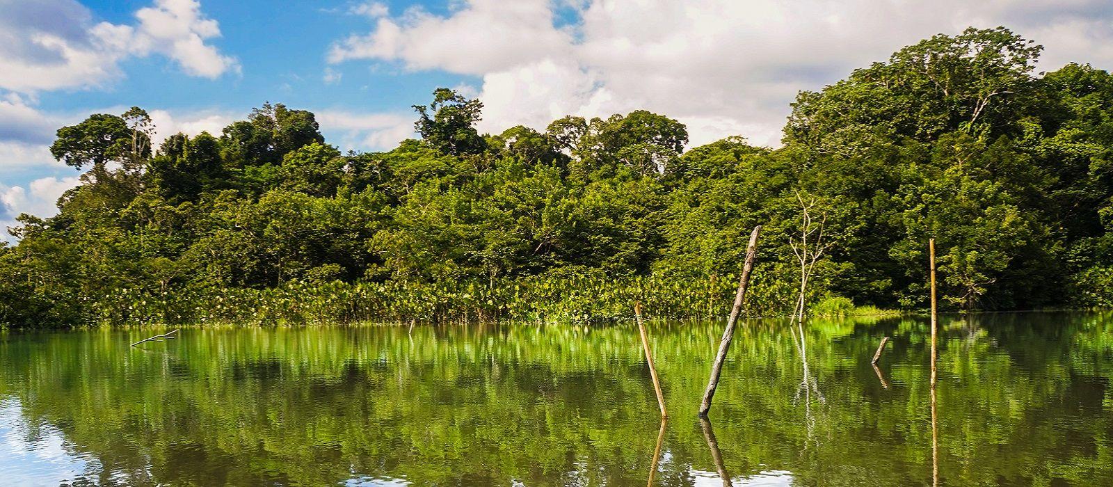 Ecuador –  Amazon, Mainland & Galapagos Tour Trip 6