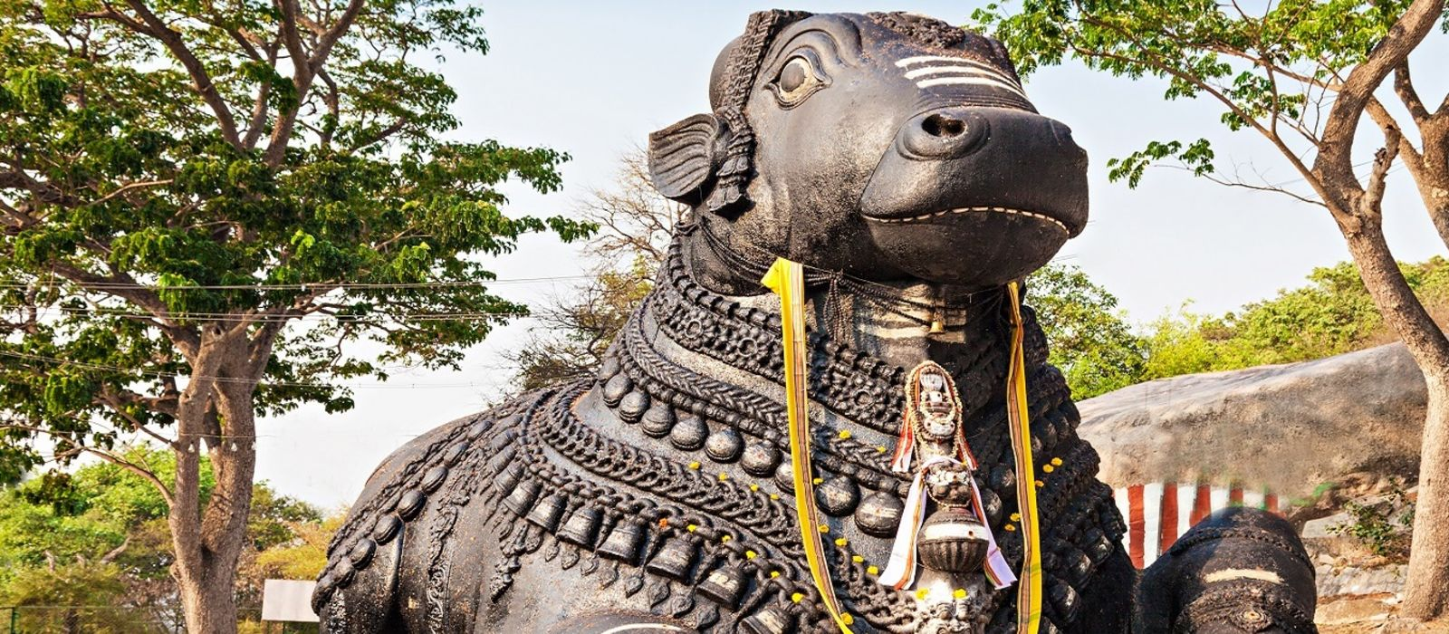 South India's Heritage Havens and Beach Tour Trip 6