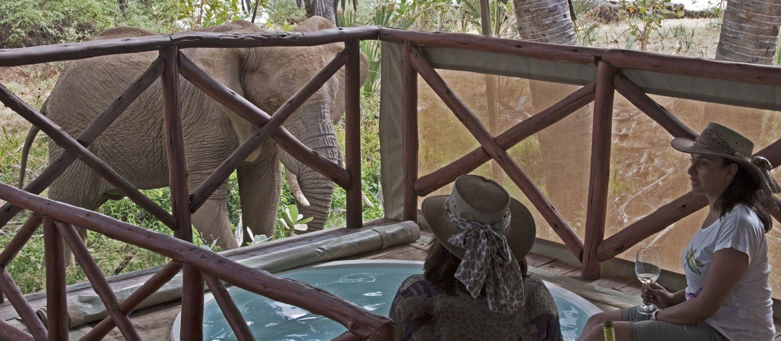 Atua Enkop Exklusiv: Kenia Safari und Strandurlaub Urlaub 6