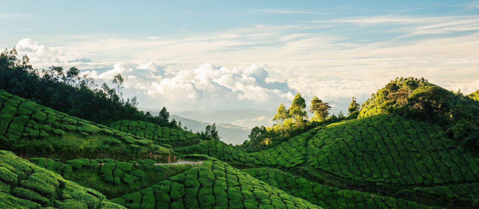 Südindiens Erbe, Landschaft & Strände Urlaub 4