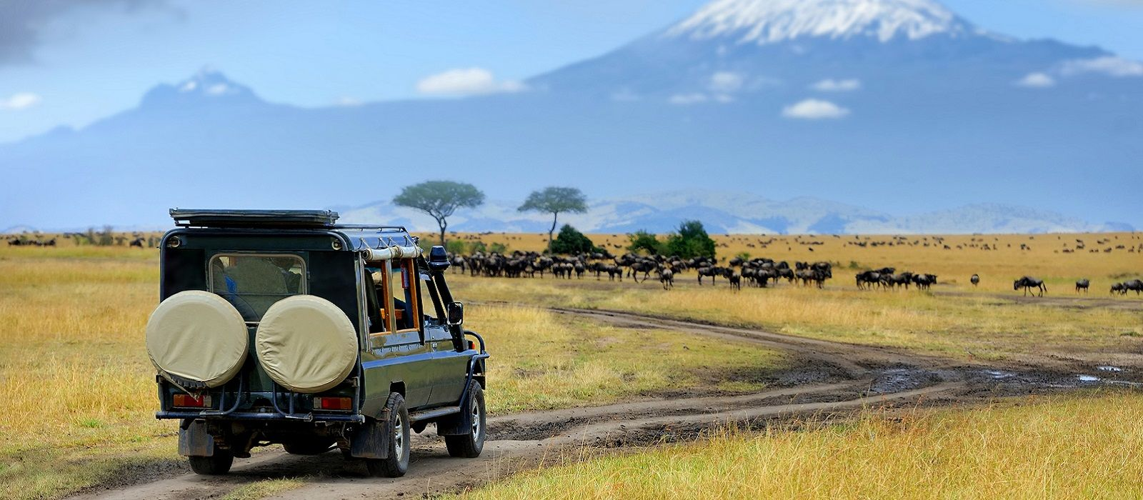 Classic Kenya: Samburu, Masai Mara and Beach Break Tour Trip 2
