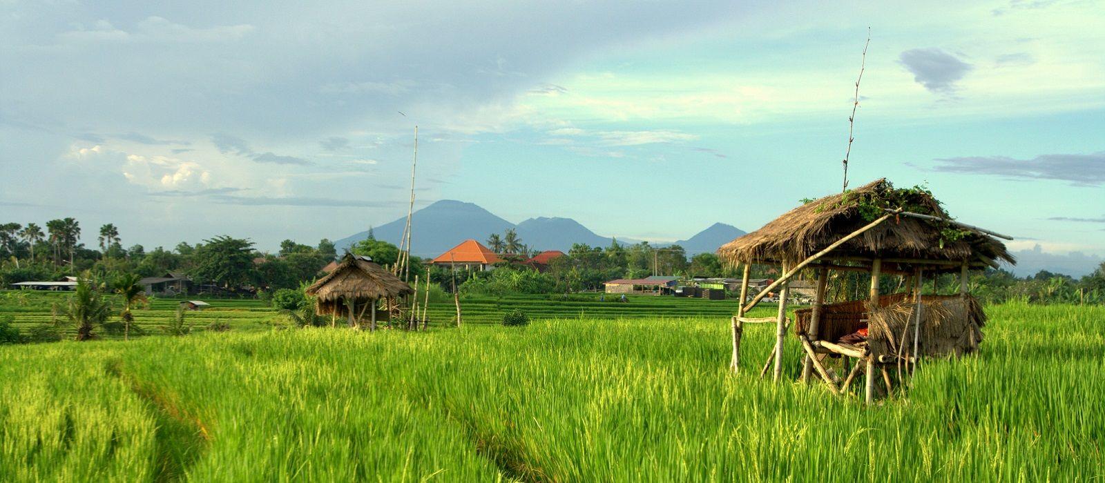 Destination Canggu Indonesia