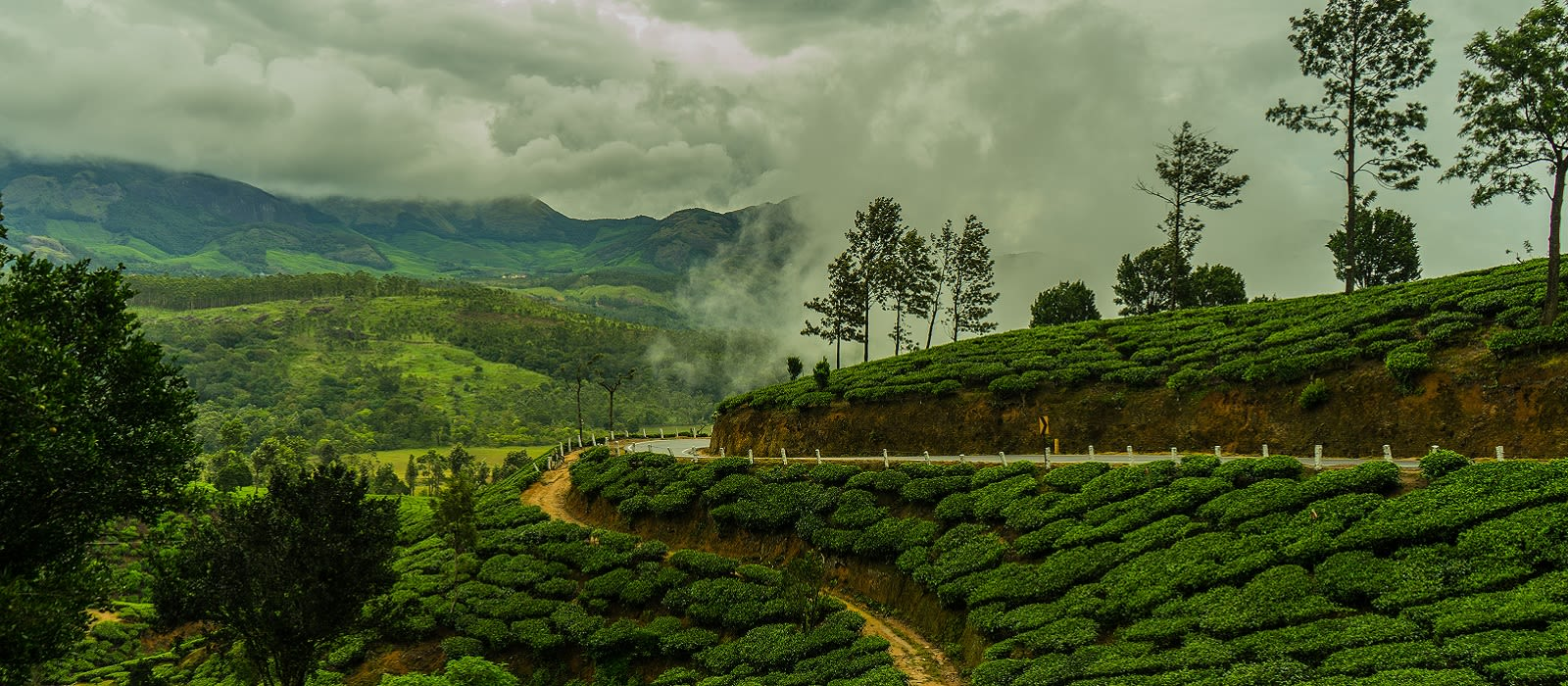 Classic Kerala: God's own Country Tour Trip 5