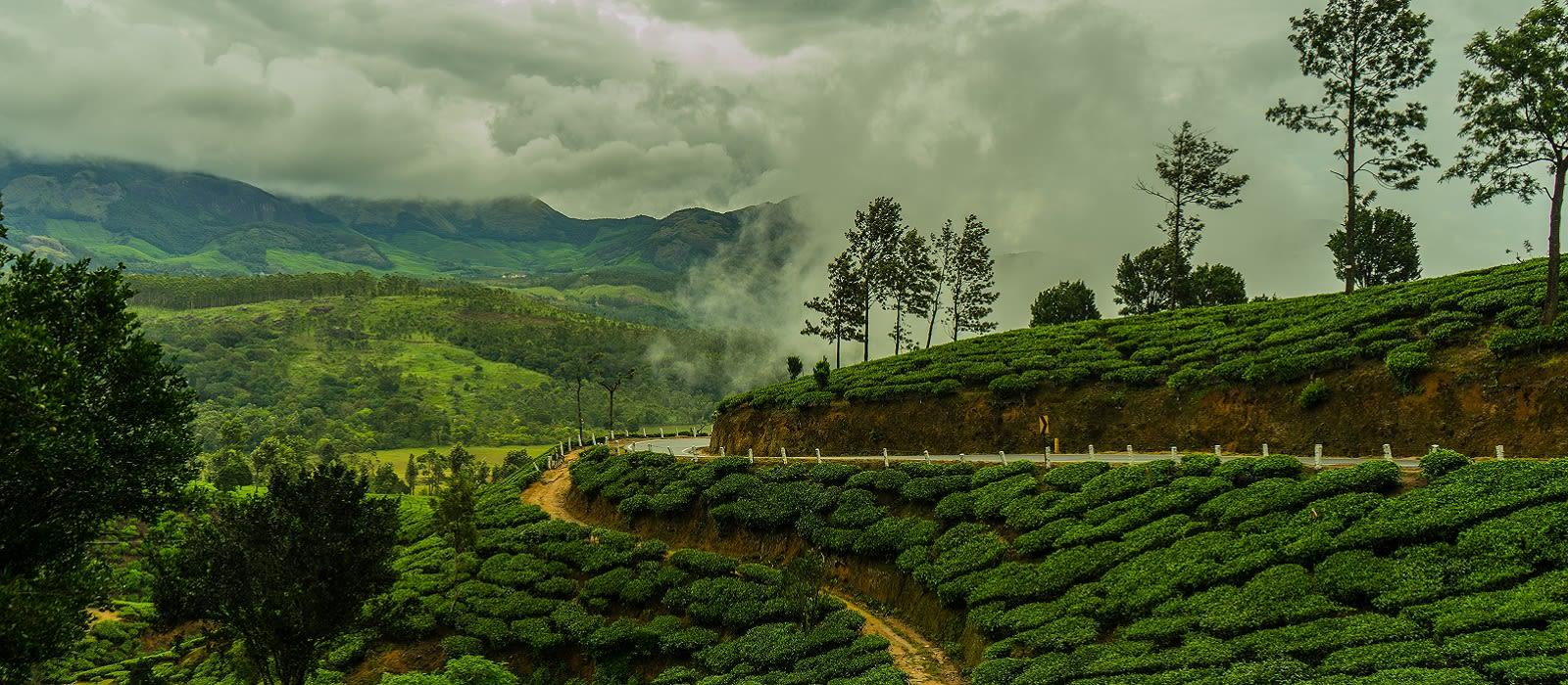 Kerala: Aromen, Traditionen & tropische Träume Urlaub 2