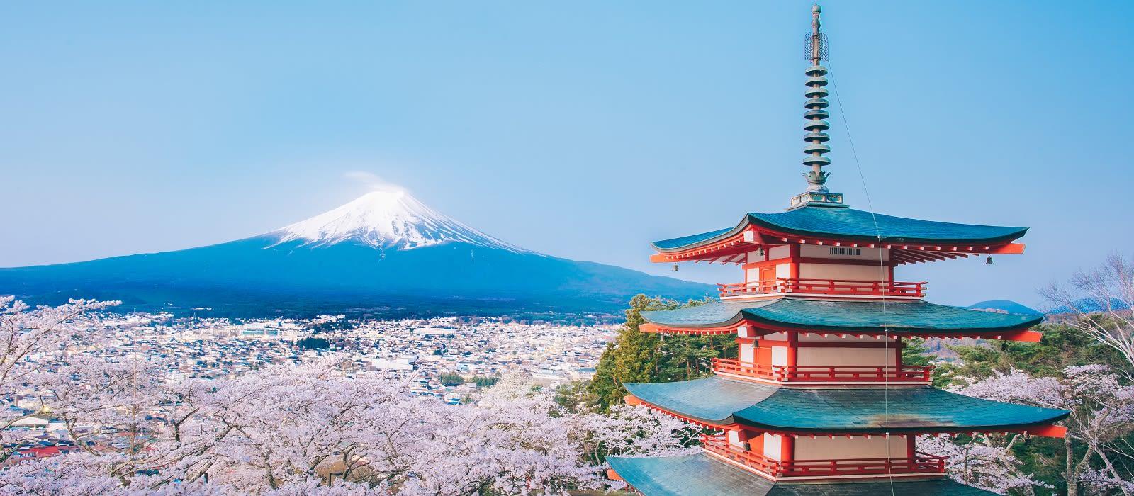 Japan's Hidden Treasures Tour Trip 1