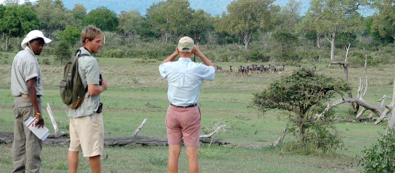 Tanzania Luxusreise – Safari-Abenteuer & Strandparadies Urlaub 2