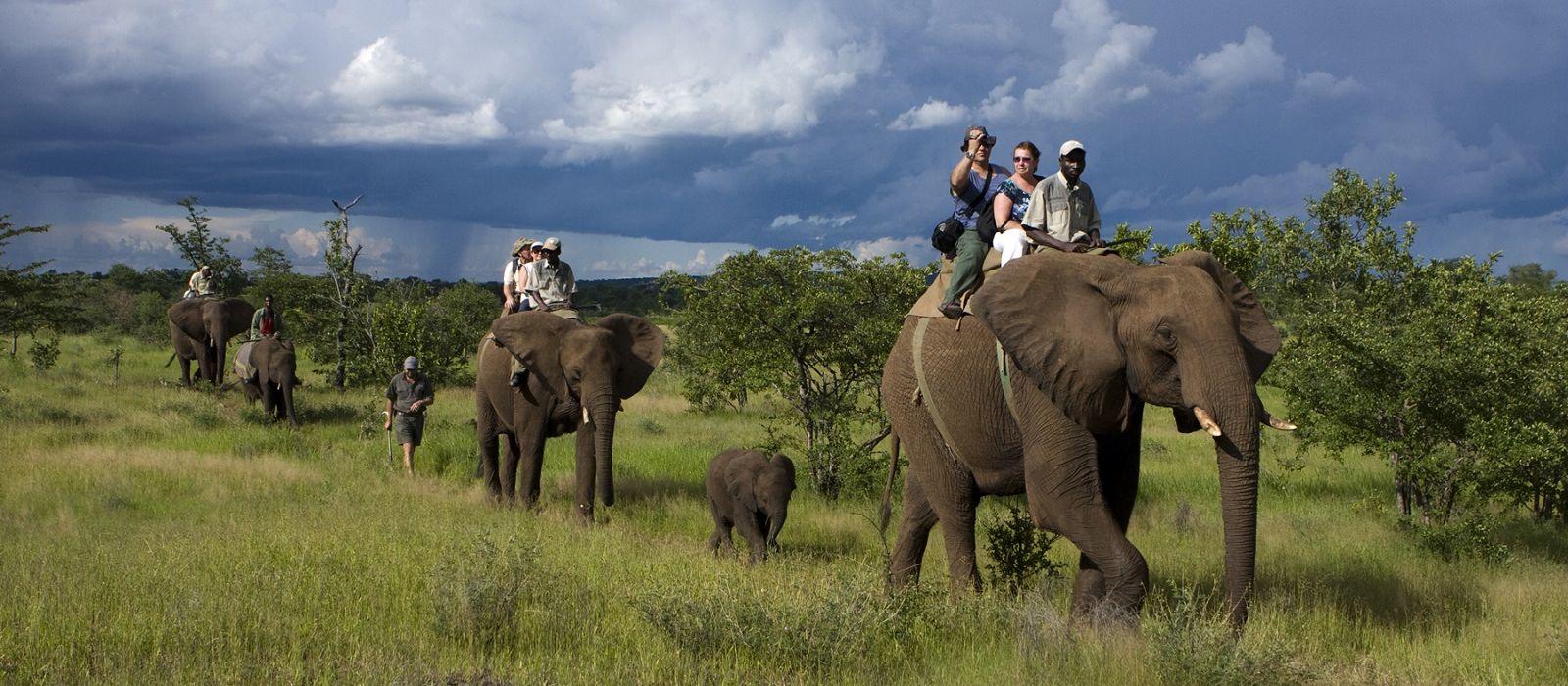 Selbstfahrer-Reise nach Südafrika, Namibia & Simbabwe: Nord Kap via Caprivi und Viktoriafälle Urlaub 6