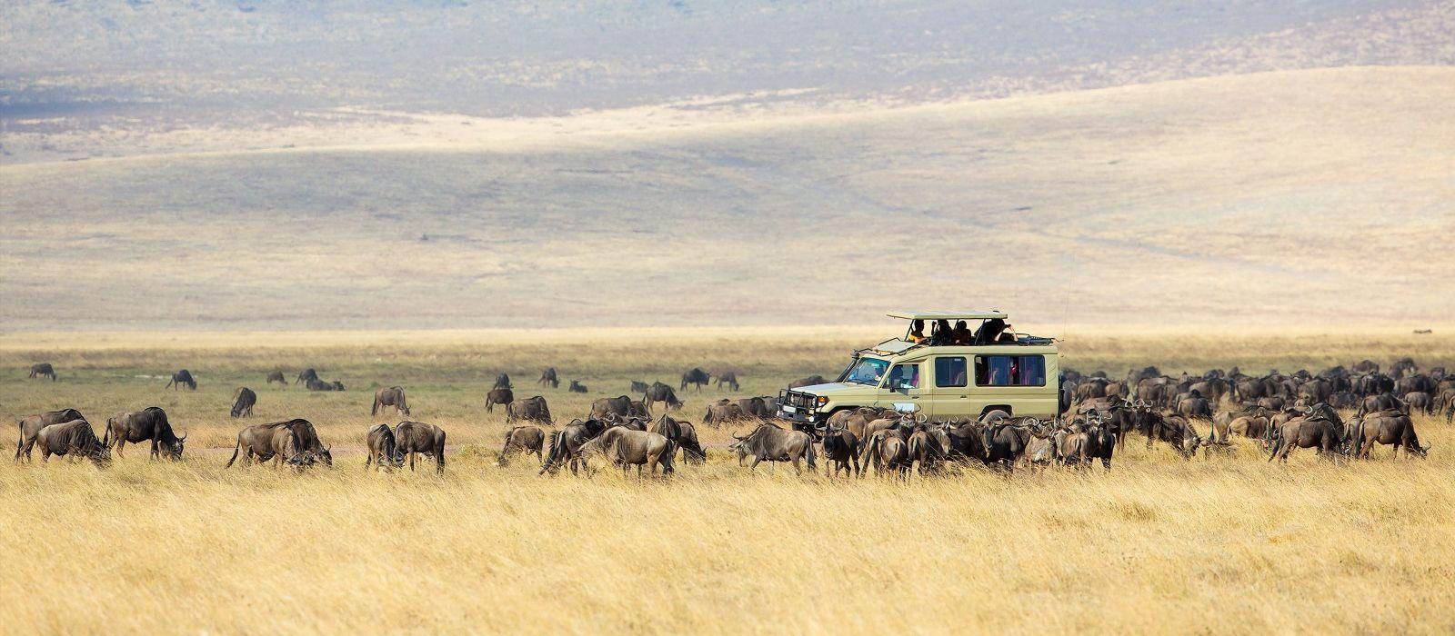 Maasai Magic, Safari and Zanzibar Tour Trip 3