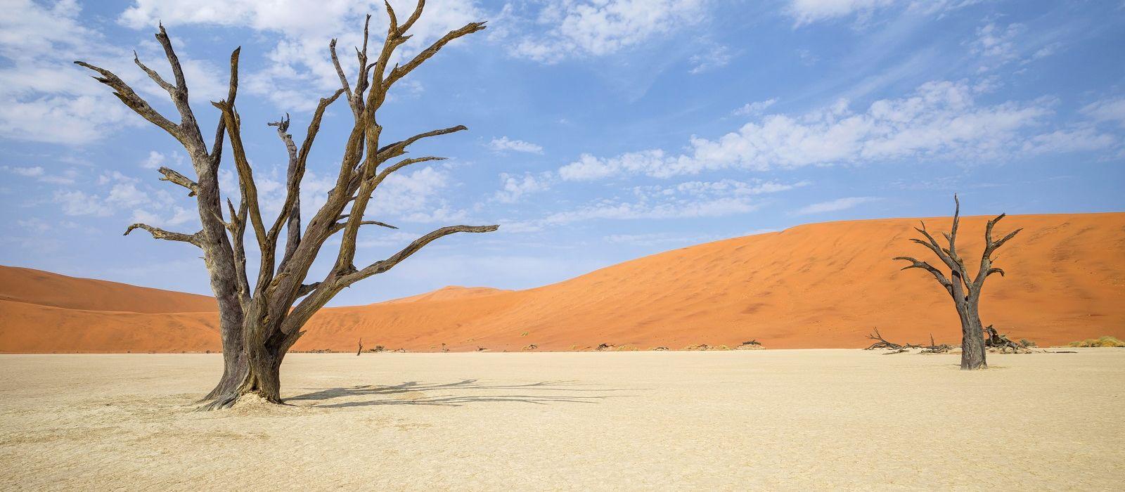 Namibia Flugreise: Die Klassiker Urlaub 5