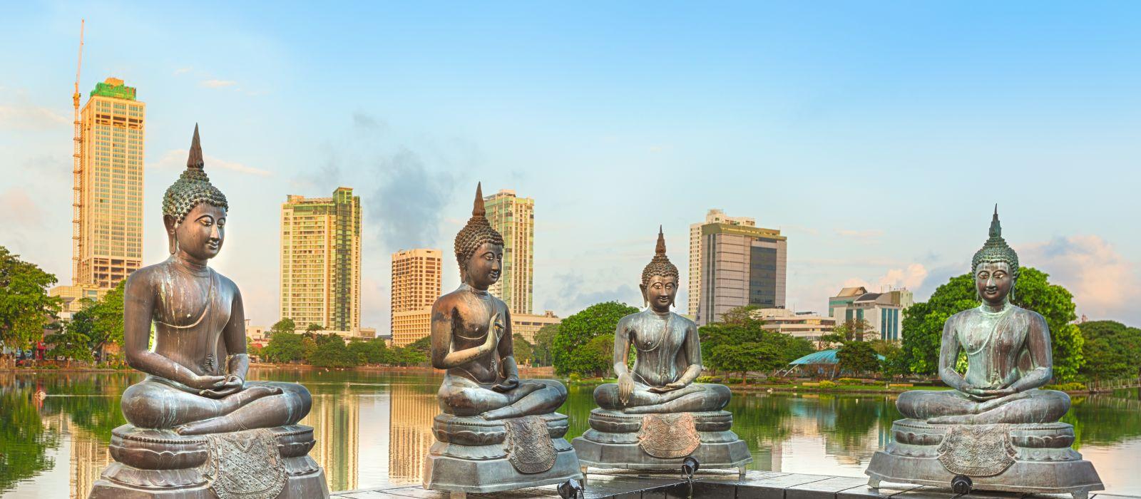 Sri Lanka: Ancient Wonders and Beaches Tour Trip 6